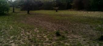 A FENCED PLOT OF LAND MEASURING OF 525m2 FOR SALE AT IKORODU, LAGOS